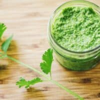 a jar of cilantro pesto next to a stalk of cilantro
