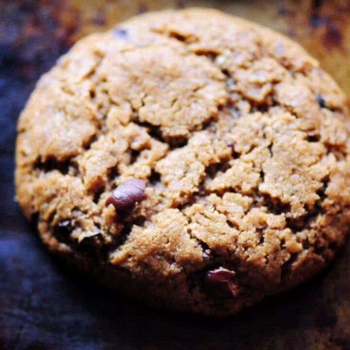 Peanut Butter Cacao Nib Coconut Flour Cookies (Gluten-Free, Dairy-Free, Refined Sugar-Free)