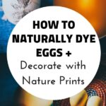 pin for homemade egg dyes