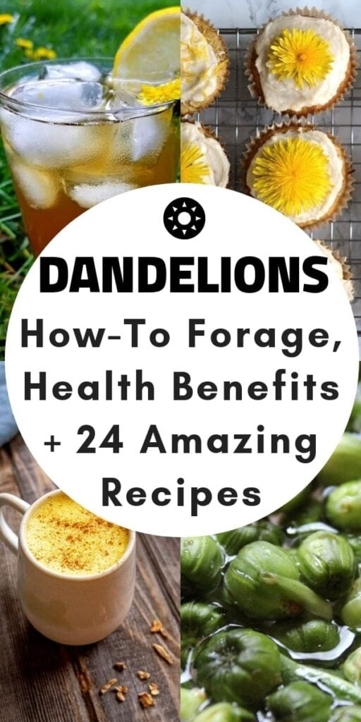 a pinterest pin image for dandelion recipes