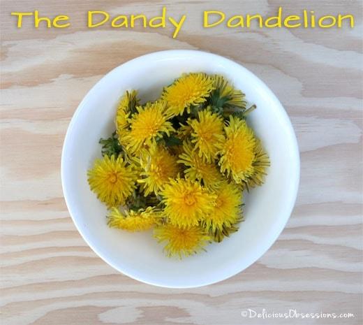 Dandelion Flower Fritters Recipe