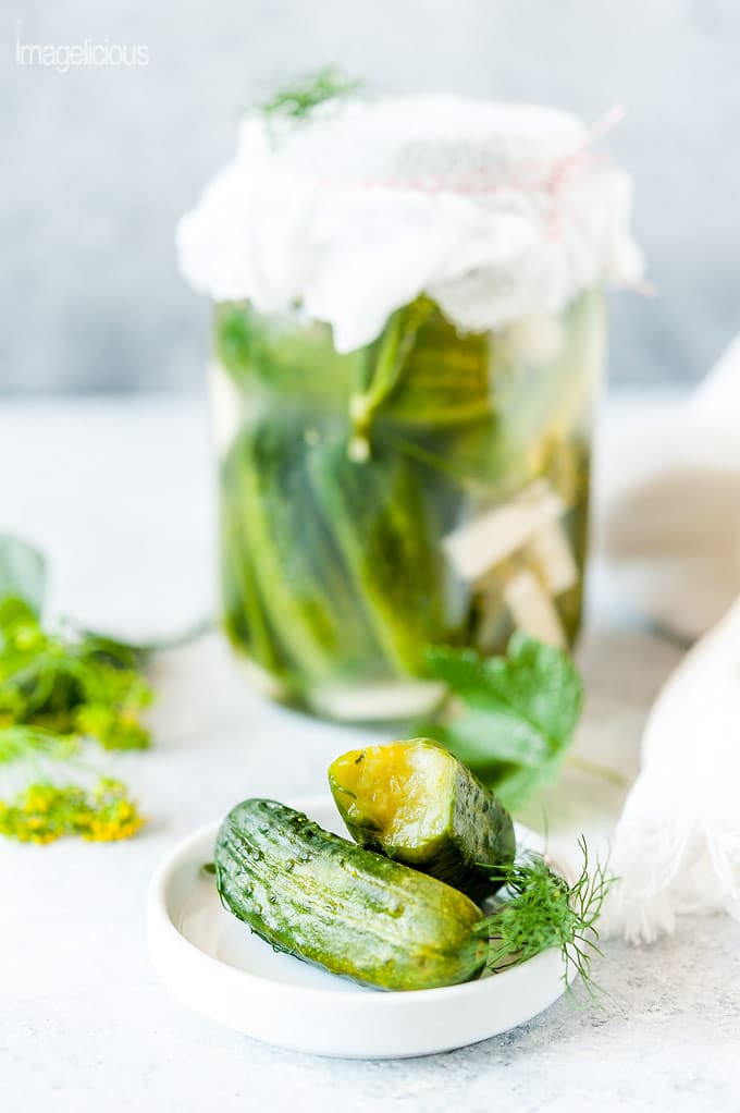 Russian Dill Pickles (Quick and Low-Salted)