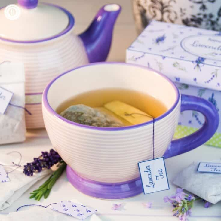 Lavender Tea and DIY Tea Bags from Coffee Filters