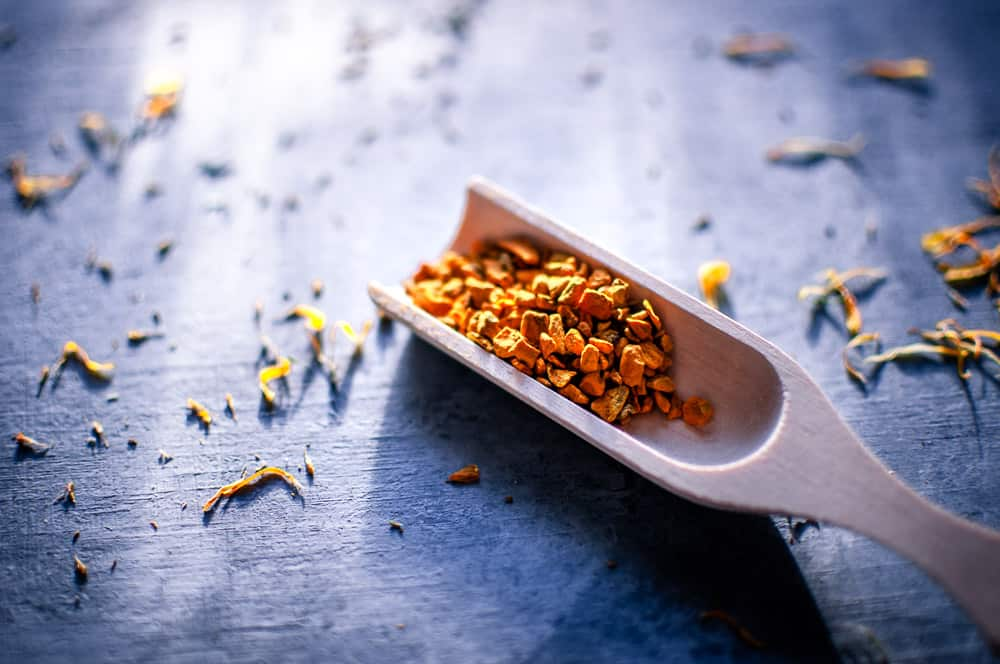 a wooden scoop from mountain rose herbs filled with turmeric root on a gray backdrop lit by sunlight