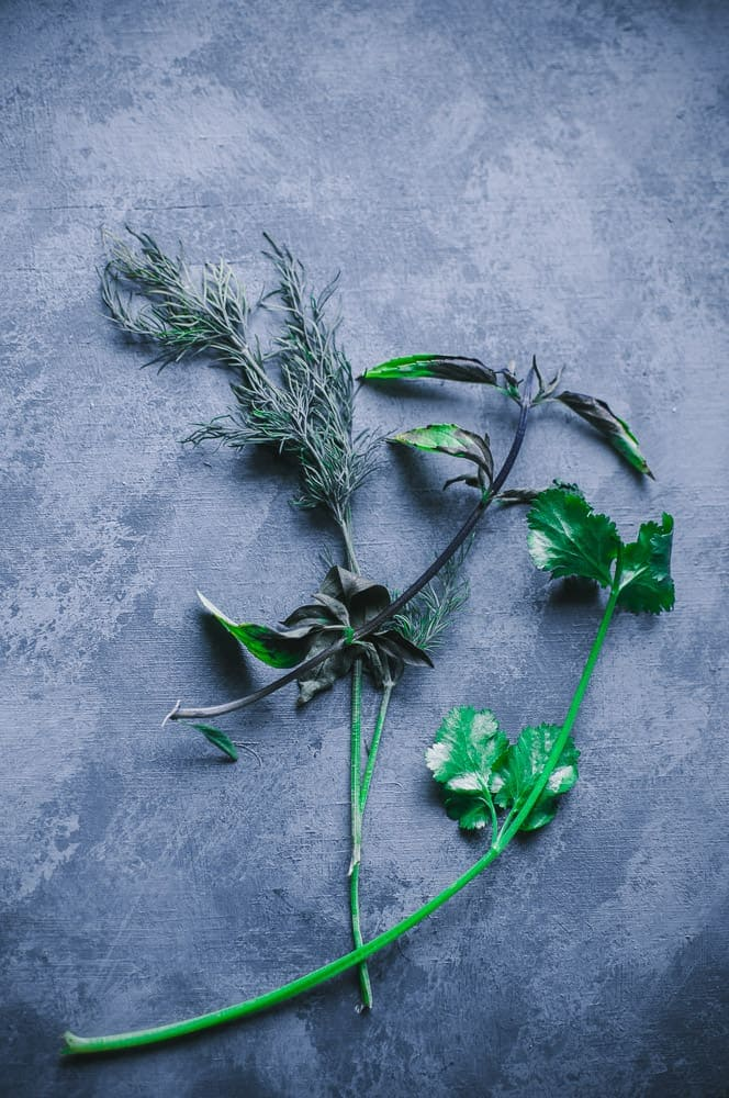 basil mint and dill on a sponge painted wooden gray backdrop