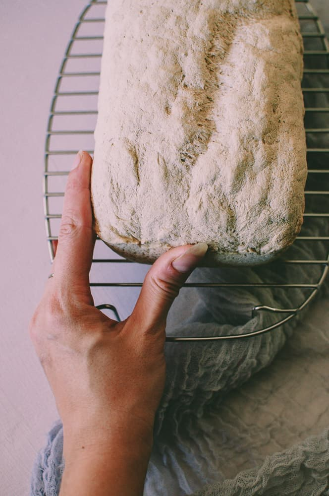 a hand holding a loaf of vegan gluten free white bread