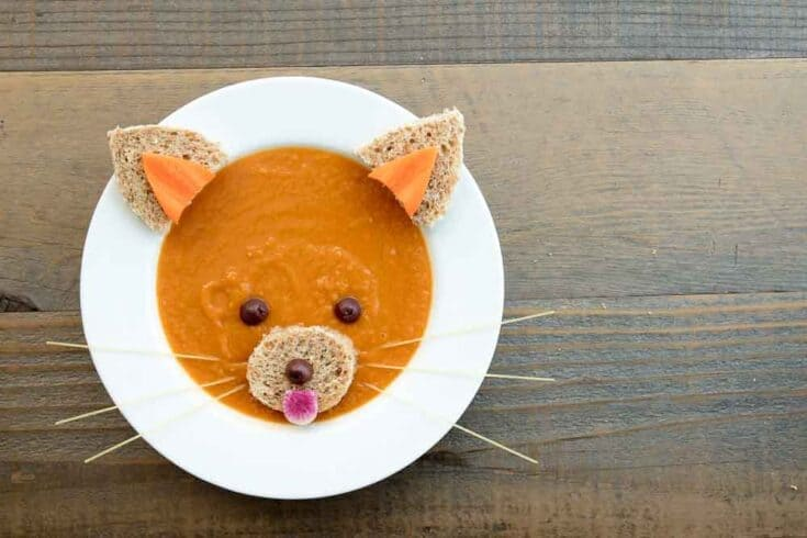 red panda carrot miso soup