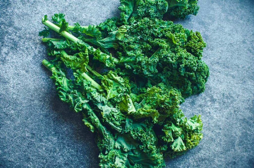 a vibrant green bunch of kale