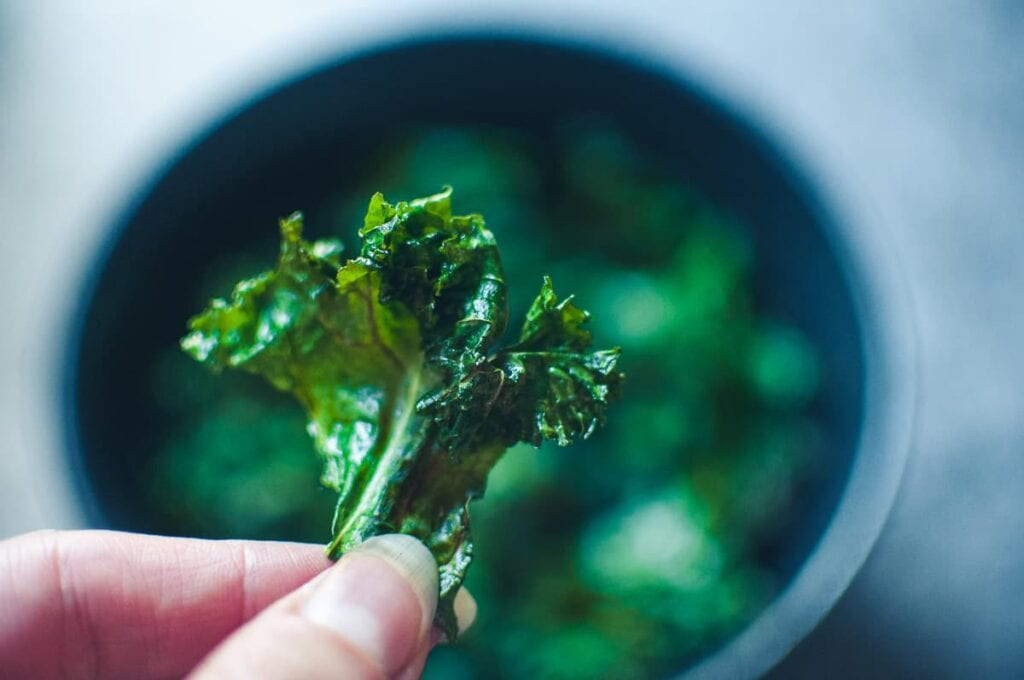 a close up of a hand holding an air fried kale chip