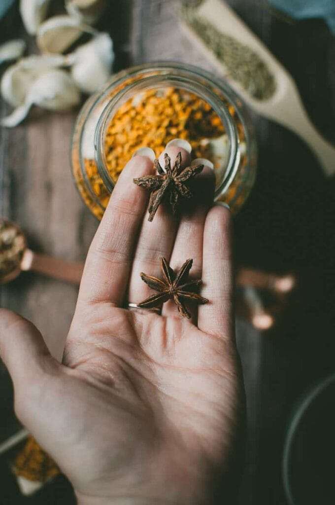 a hand holding star anise pods