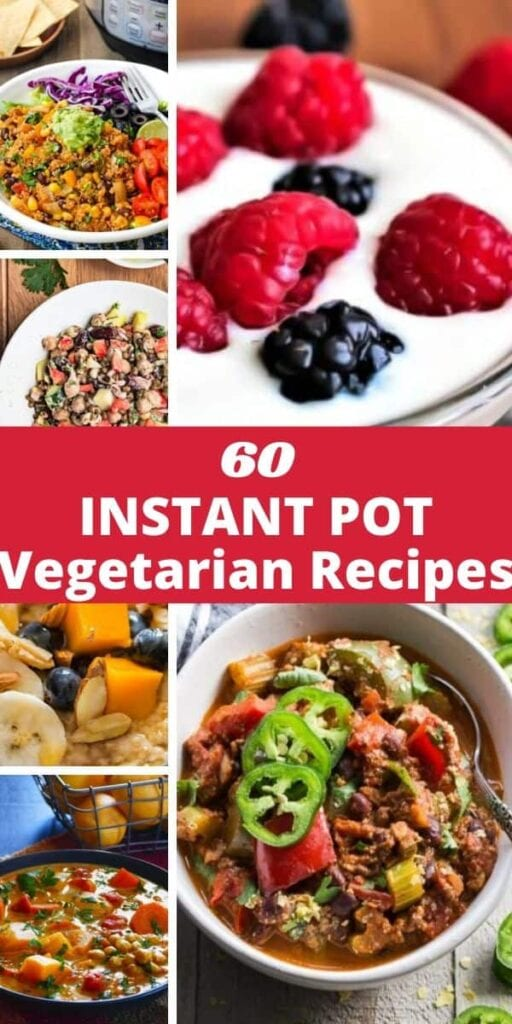 a pinterest pin for vegetarian recipes