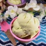 Homemade Avocado Ice Cream