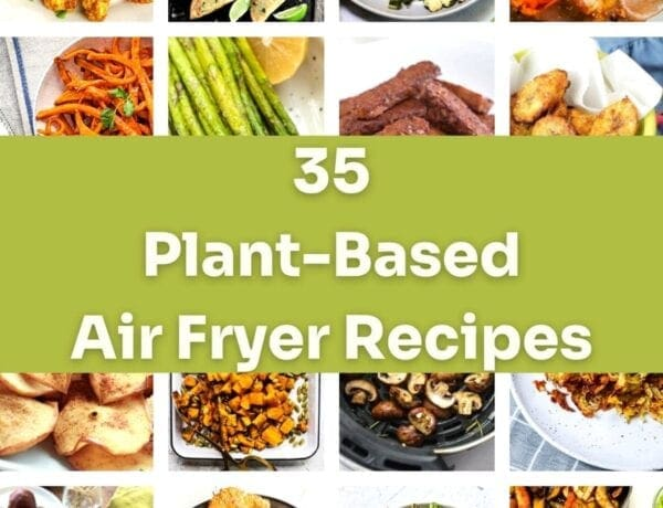 plant based air fryers recipe collection