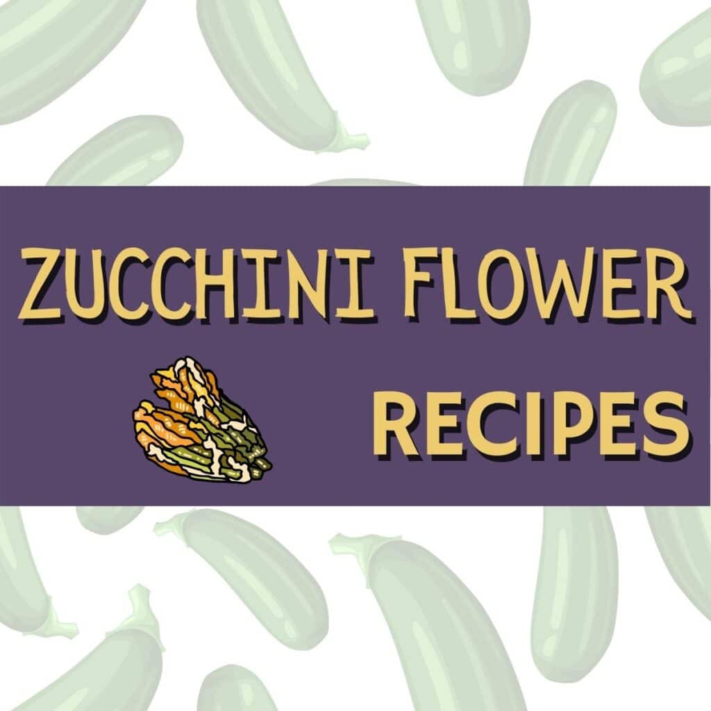 square image about zucchini flower recipes