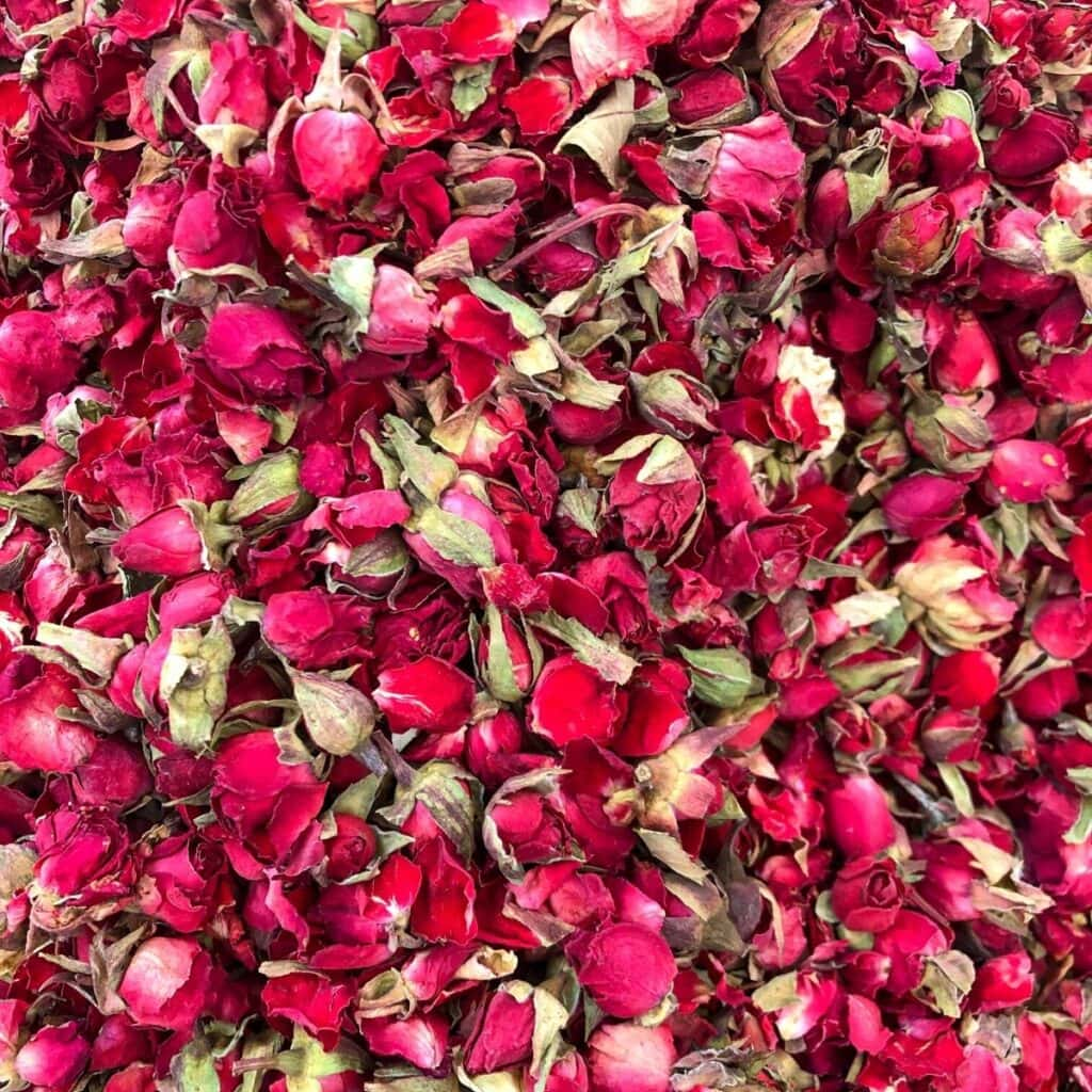 hundred of dark pink rosebuds fill the frame of this square image