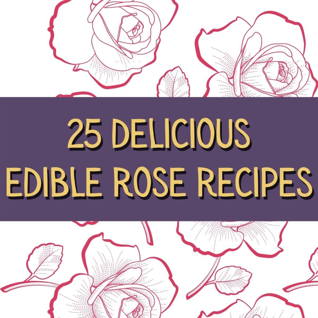 rose recipes square image